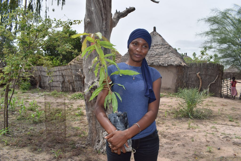 Sénégal: Fatoumata Diedhiou parmi les lauréats du prix inaugural SRIC 30 Under 30